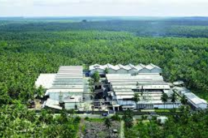 Haycarb - Factory